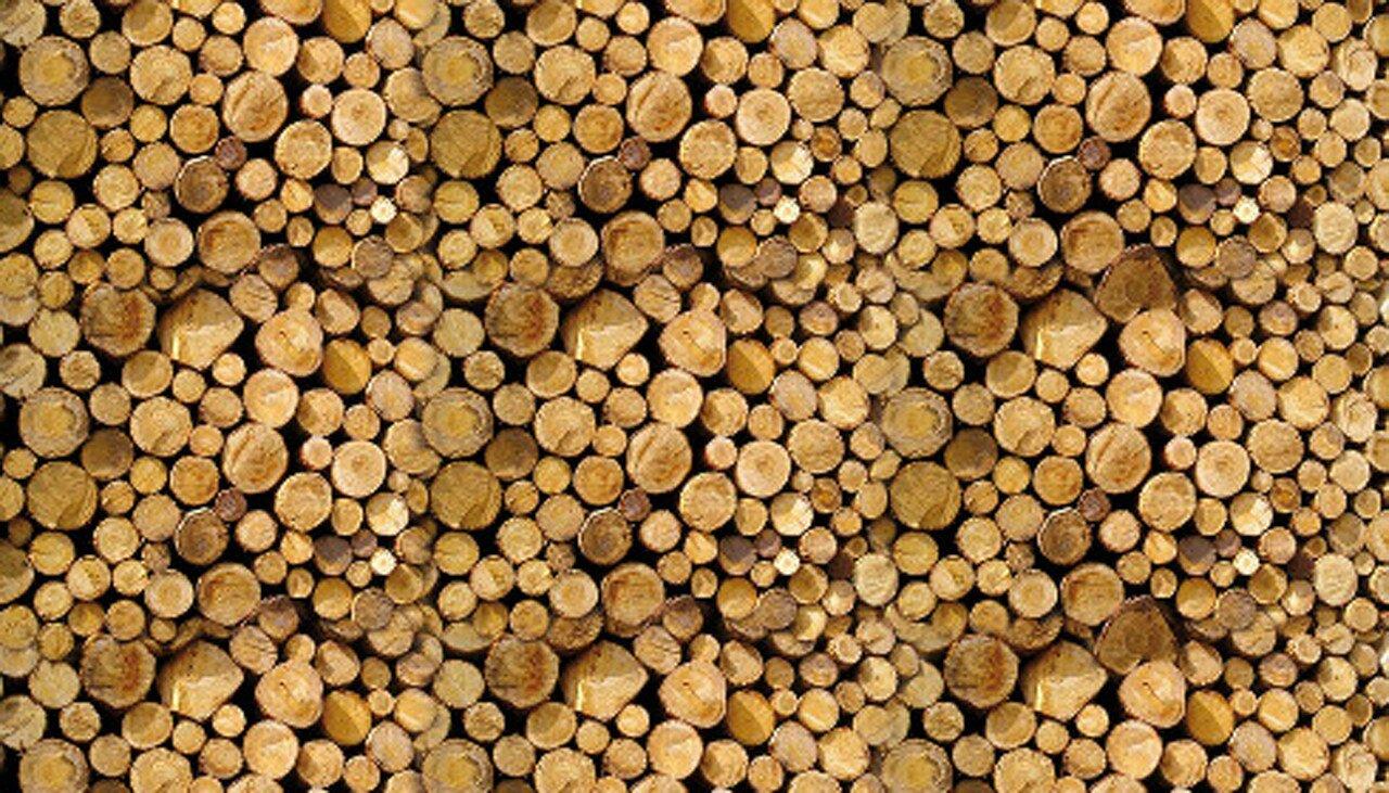 legno_toalpi